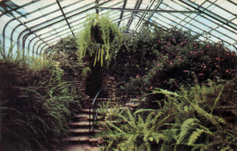 Interior of the Conservatory at Como Park, St. Paul Minnesota, 1953
