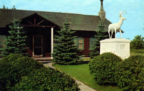 Wildlife Museum in Bemidji Minnesota, 1954
