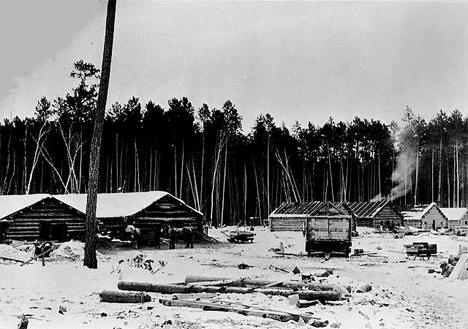 Lumber camp in the Pine Island area west of Big Falls Minnesota, 1902