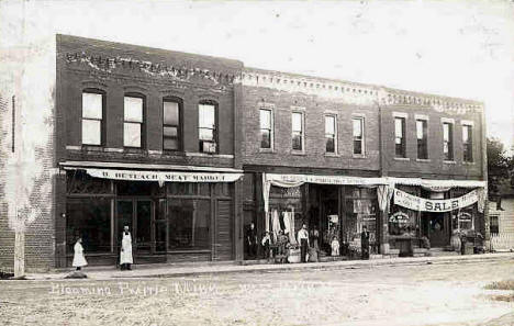 Street View, Blooming Prairie Minnesota, 1911