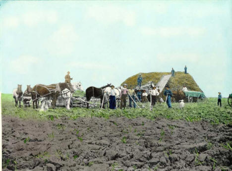 Horse powered threshing rig, Blue Earth Minnesota, 1898