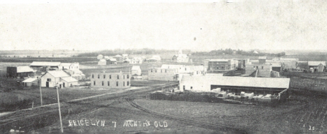 View of Bricelyn Minnesota in its first year