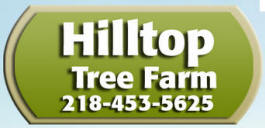 Hilltop Tree Farm, Brookston Minnesota