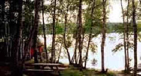 Birch Haven Resort, Bovey Minnesota