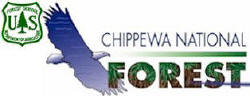 Chippewa National Forest, Cass Lake Minnesota