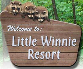 Little Winnie Resort, Deer River Minnesota