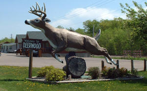 Welcome to Deerwood Minnesota