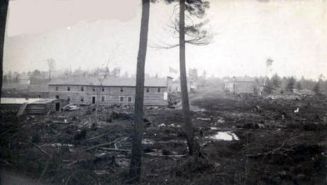 Early Ely Minnesota; buildings and street through trees and stumps, 1888