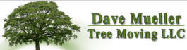 David Mueller Tree Moving Service, Eyota Minnesota