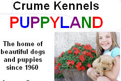 Crume Kennels Puppy Land, Glyndon Minnesota