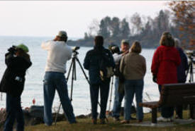 Boreal Birding and Northern Landscapes Festival, Grand Marais Minnesota