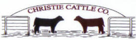 Christie Cattle Company, Hancock Minnesota