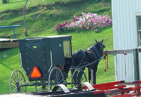 Amish Tours of Harmony Minnesota