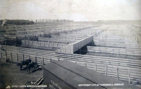 Stock Yards, Montevideo Minnesota, 1910