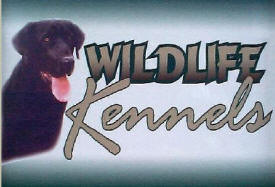 Fritz's Wildlife Kennels, Morristown Minnesota