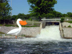 Rapids and Pelican in Pelican Rapids Minnesota