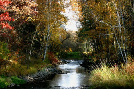 Skunk River in the Fall near Pierz Minnesota, 2006