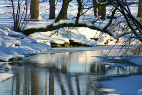 Skunk River in the Winter near Pierz Minnesota, 2006