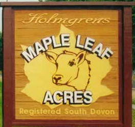 Maple Leaf Acres Farm, Randall Minnesota