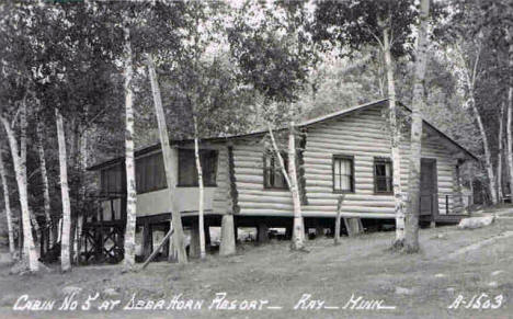 Cabin at Deer Horn Resort, Ray Minnesota, 1950's