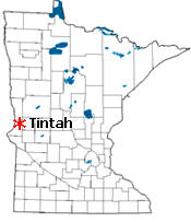 Location of Tintah Minnesota