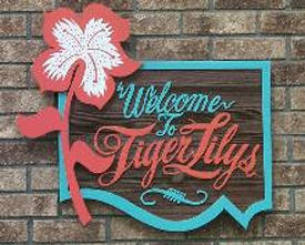 Tiger Lily's Boutique, Walker Minnesota