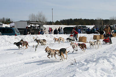 Sled Dog Challenge in Wilton Minnesota