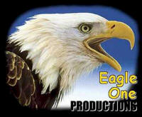 Eagle One Productions Web Design, Cook Minnesota