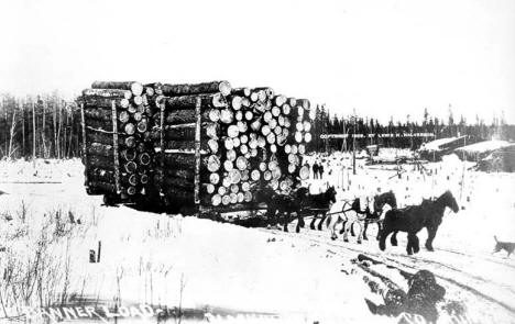 Banner load, Blackduck, Minnesota : biggest load of logs ever hauled  by Lewis H. Halvorson, 1909