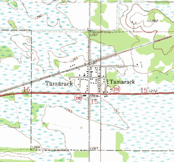 Topographic map of the Tamarack Minnesota area