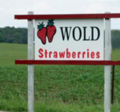 Wold Strawberry Farm, Mabel Minnesota