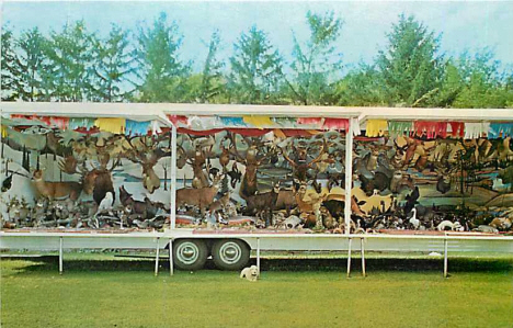 H & H Wildlife Mobile Museum, Spring Valley Minnesota, 1966