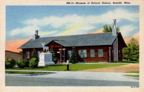 Museum of Natural History, Bemidji Minnesota, 1952