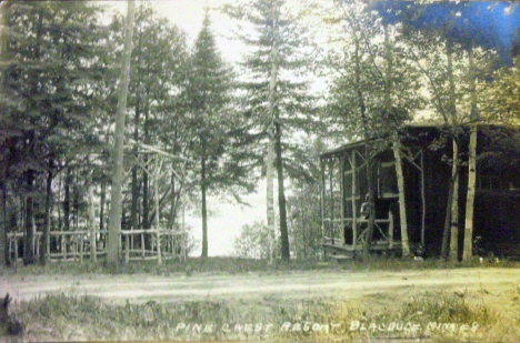 Pine Crest Resort, Blackduck Minnesota, 1930's