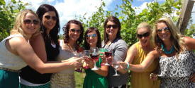 Richwood Winery, Callaway Minnesota