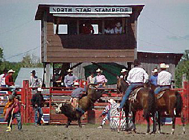 North Star Stampede Rodeo, Effie Minnesota