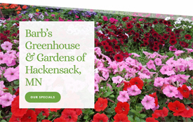 Barb's Greenhouse and Gardens, Hackensack Minnesota