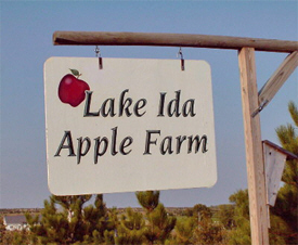 Lake Ida Apple Farm, Lake Park Minnesota