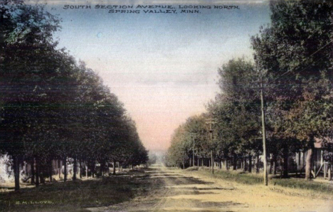 South Section Avenue looking north, Spring Valley Minnesota. 1908