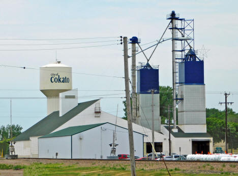 Elevator and Water Tower, Cokato Minnesota, 2020