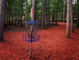 Blue Ribbon Pines Disc Golf Course, East Bethel Minnesota