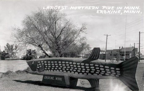 Largest Northern Pike in Minnesota, Erskine Minnesota, 1950's