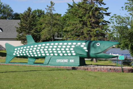 Largest Northern Pike in Minnesota, Erskine Minnesota, 2013