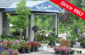 Schulte's Greenhouse and Nursery, St. Michael Minnesota